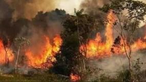 القدس المحتلة : حريق هائل في مستوطنة وسلطات الاحتلال تعمل على إخماد النيران بالطائرات