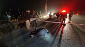 """نابلس: استشهاد الضابط في جهاز المخابرات """"محمد النجار"""" برصاص قوات الاحتلال"""